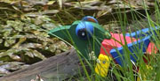 sehenswert - Libellensee in Lech Zürs